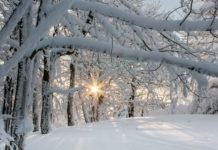 Im Winter ist bei der Hautpflege und beim Sonnenschutz weniger Feuchtigkeit gefragt. Die Haut braucht fetthaltigeren Schutz.