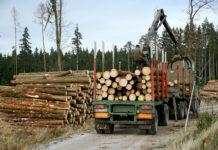 Forststraßen sind nicht für die gleichzeitige Benützung schwerer Forstmaschinen und Mountainbiker ausgelegt.