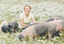 Grabmann weiß: Krankheiten bei Tieren verursachen Behandlungskosten