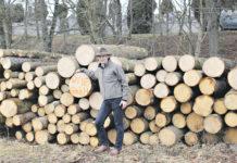 Die Waldwirtschaftsgemeinschaft Raabs an der Thaya