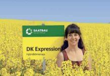 Top-Erträge mit DK Expression