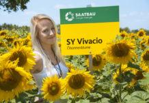 SY Vivacio liefert hohe Ölerträge.