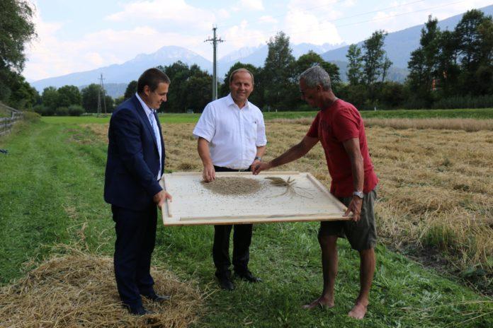 Klaus Wallnöfer, Vorstand der Abteilung landwirtschaftliches Schulwesen, Jagd und Fischerei, LHStv. Josef Geisler und Christian Partl von der Genbank des Landes Tirol (v. l.) sind überzeugt von den alten Landsorten.